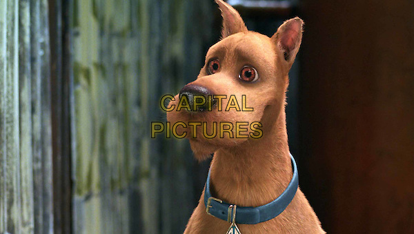 SCOOBY-DOO .in Scooby Doo 2: Monsters Unleashed.Filmstill - Editorial Use Only.Ref: FB.www.capitalpictures.com.sales@capitalpictures.com.Supplied by Capital Pictures