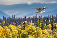 Float plane makes an approach to land on Naknek lake, Katmai National Park, southwest, Alaska.