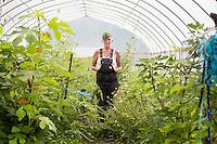 Long Arm Farm, an organic farm, near the town of Westby, Wisconsin