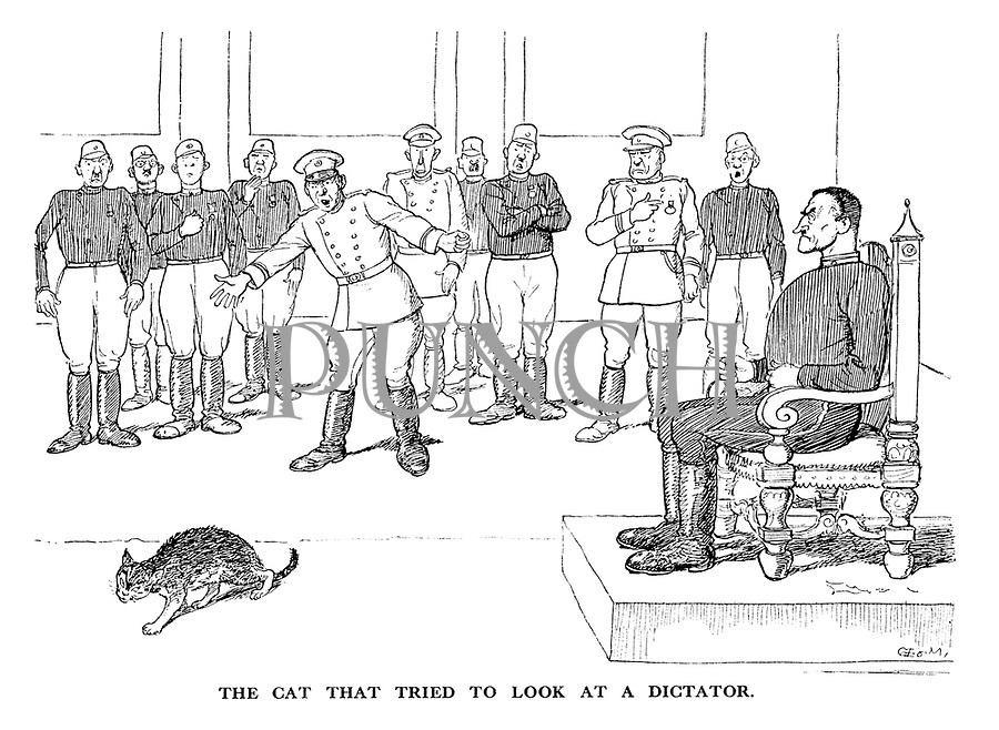 The Cat that Tried to Look at a Dictator.