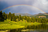 A large rainbow forms following a storm above Trout Lake, Lamar Valley, Yellowstone National Park.