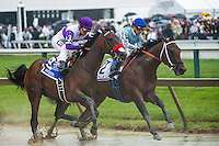BALTIMORE, MD - MAY 21: Nyquist #3, ridden by Mario Gutierrez, enters the first turn during the 141st running of the Preakness Stakes at Pimlico Race Course on May 21, 2016 in Baltimore, Maryland. (Photo by Amy K. Dragoo/Eclipse Sportswire/Getty Images)