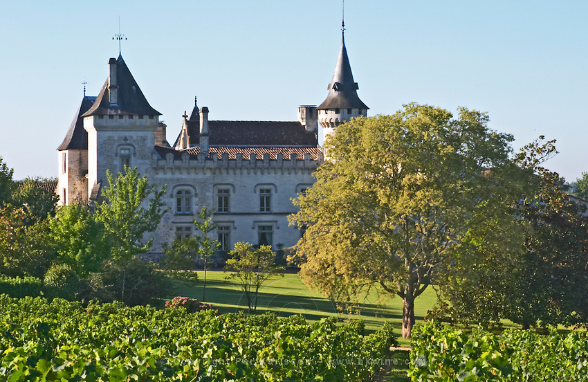 The chateau with turrets and vineyard - Chateau Carignan, Premieres Cotes de Bordeaux