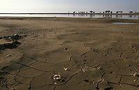 A view of the Yellow River showing its increasingly low water level. China's second longest river usually dries up every year before it reaches the sea.