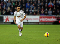 Pictured: Neil Taylor of Swansea Saturday 10 January 2015<br />