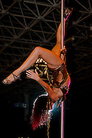 Winning professional competitor Agnes Kollarik performs on the pole during the first ever Hungarian Pole Dance Championships organized by former striptease world champion Alma Pirner as part of the Erotic Exhibition held in Hungexpo center. in Budapest, Hungary on September 06, 2008. ATTILA VOLGYI