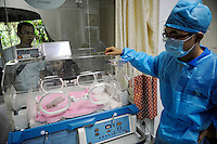 A staff takes care of a 10-day-old baby panda while two tourists look on at Chengdu Panda Base in Sichuan province, China. 25-Jul-2010