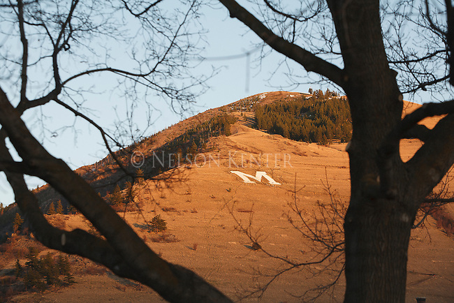 the M on mount sentinel viewed through trees in missoula, montana