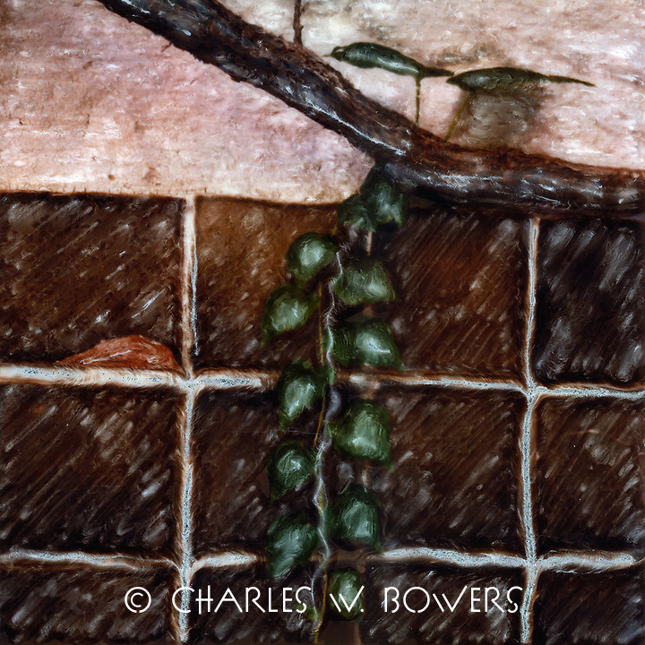 Vine decending from grape arbor in the family dining area covered with grape arbor. Lourmarin Provence<br />