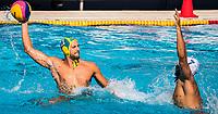 12 BROOKS Nicholas AUS  <br /> FRA (white cap) -  AUS (blue cap)<br /> Preliminary Round Water Polo Women<br /> Day06  19/07/2017 <br /> XVII FINA World Championships Aquatics<br /> Alfred Hajos Complex Margaret Island  <br /> Budapest Hungary <br /> Photo @ Deepbluemedia/Insidefoto