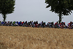 The peloton approach Titz during Stage 2 of the 104th edition of the Tour de France 2017, running 203.5km from Dusseldorf, Germany to Liege, Belgium. 2nd July 2017.<br /> Picture: Eoin Clarke | Cyclefile<br /> <br /> <br /> All photos usage must carry mandatory copyright credit (&copy; Cyclefile | Eoin Clarke)