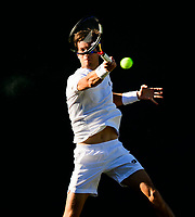 ALJAZ BEDENE (GBR)<br /> <br /> TENNIS - THE CHAMPIONSHIPS - WIMBLEDON- ALL ENGLAND LAWN TENNIS AND CROQUET CLUB - ATP - WTA -ITF - WIMBLEDON-SW19, LONDON, GREAT  BRITAIN- 2017  <br /> <br /> <br /> &copy; TENNIS PHOTO NETWORK