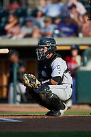 Grand Junction Rockies catcher Ronaiker Palma (47) during a Pioneer League game against the Grand Junction Rockies at Dehler Park on August 15, 2019 in Billings, Montana. Billings defeated Grand Junction 11-2. (Zachary Lucy/Four Seam Images)
