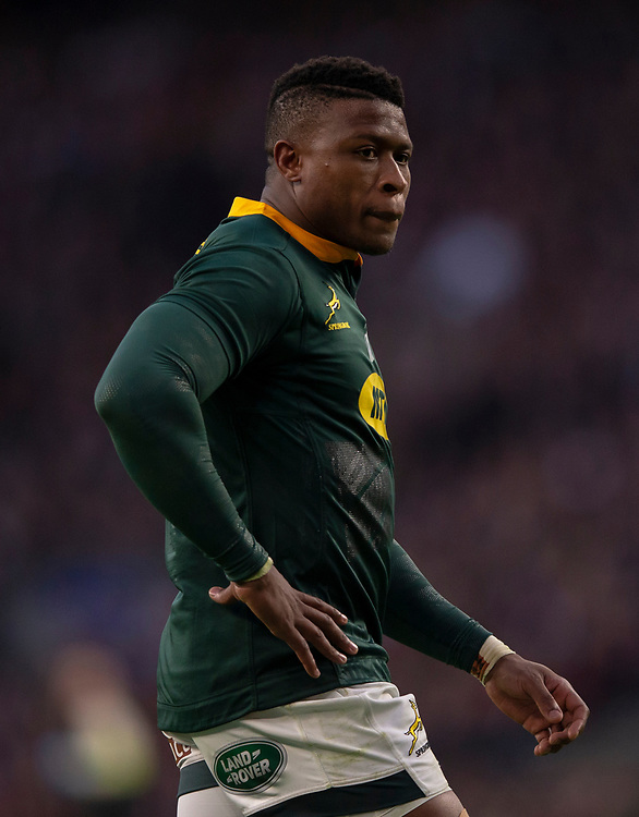 South Africa's Aphiwe Dyantyi<br /> <br /> Photographer Bob Bradford/CameraSport<br /> <br /> Quilter Internationals - England v South Africa - Saturday 3rd November 2018 - Twickenham Stadium - London<br /> <br /> World Copyright © 2018 CameraSport. All rights reserved. 43 Linden Ave. Countesthorpe. Leicester. England. LE8 5PG - Tel: +44 (0) 116 277 4147 - admin@camerasport.com - www.camerasport.com