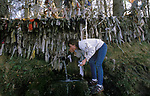 Clootie Well Nr Tore Munlochy Black Isle. Takes place on May 1st , the tradition to hang a piece of rag or Clootie and drink the spring water and make a wish for health. Rub water on body [part that is infected. 1990s.