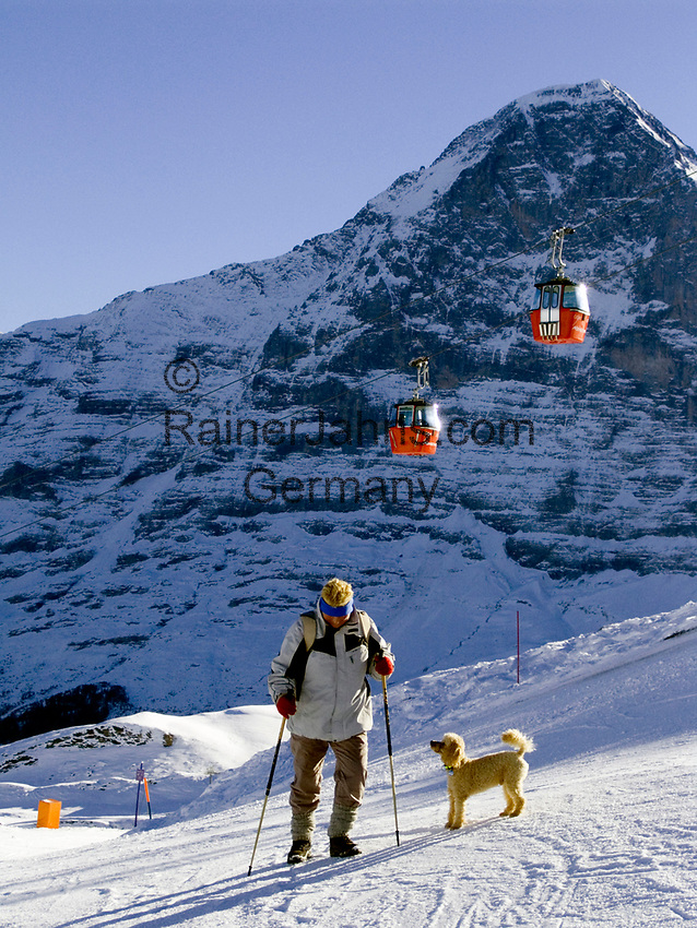 CHE, Schweiz, Kanton Bern, Berner Oberland, Grindelwald: Winterwanderweg im Maennlichen Skigebiet mit Gondelbahn und Eiger Nordwand (3.970 m) | CHE, Switzerland, Canton Bern, Bernese Oberland, Grindelwald: winter hiking trail at Maennlichen ski area w. cable car and Eiger mountains
