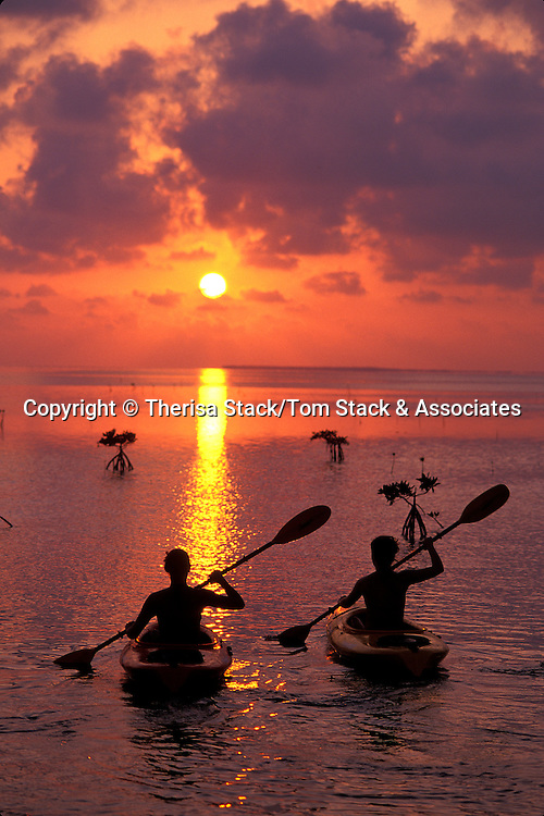 Kayaking, Florida Bay, Islamorada, Florida