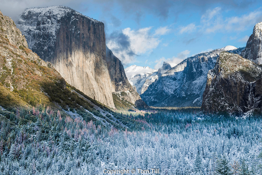 El Capitan above Yosemite Valley and Merced River, California Yosemite Natiional Park,  Sierra Nevada Mountains