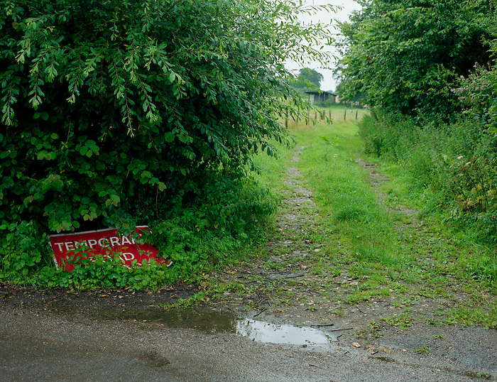 A discarded road sign - TEMPORARY ROAD - in a hedgerow on a country lane in Dorset. England 2007.