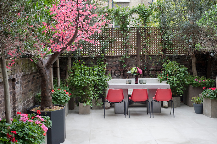 A faux tree by Enchanted Trees brings a touch of the fantastical to the contemporary courtyard garden, with its neon-pink, light-up blossoms