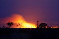 Kalahari bush fire at night