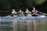 Race: 183  W.NOV.4x-   [169]Ross RC - ROS-Marshall  vs [170]Worcester RC - WRR-Hopkins <br /> <br /> Ross Regatta 2017 - Monday<br /> <br /> To purchase this photo, or to see pricing information for Prints and Downloads, click the blue 'Add to Cart' button at the top-right of the page.