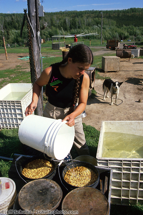 Susan Butcher Mixes Dog Food For Dogs Summer Eureka Ak