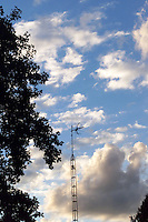 """A """"Corot"""" sky with dark, silhouetted trees and TV antenna."""