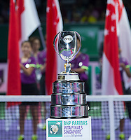 AMBIENCE<br /> <br /> The BNP Paribas WTA Finals 2014 - The Sports Hub - Singapore - WTA  2014  <br /> <br /> 26 October 2014<br /> <br /> &copy; AMN IMAGES