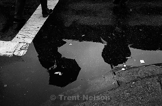 reflections in rain<br />