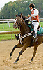 Eric Lato aboard Ony at Delaware Park on 7/19/12