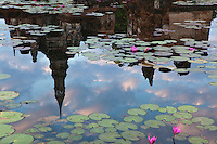 Lotus Pond at Wat Mahathat in Sukhothai - a town brimming with lotus ponds.  It is believed that Wat Mahathat was founded around the middle of the 13th Century by Thai King Sri Intaratit.  Wat Mahathat is the central focus of Sukhothai Historical Park a UNESCO World Heritage Site.