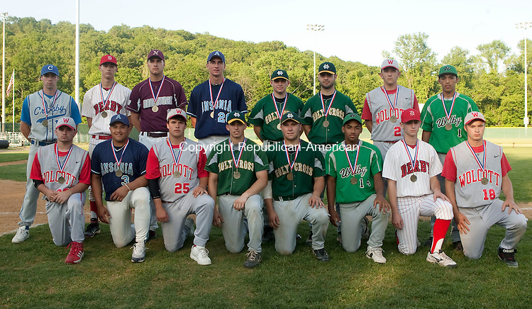 WATERBURY, CT 08 JUNE, 2010-060810JS07- Members of the All-NVL baseball team, front row, from left,  Mike Gigliotti-Wolcott; Julian Sobin-Ansonia; CJ Monroe-Wolcott; Ryan Plourde-Holy Cross; John Augelli-Holy Cross; Andre Eason-Wilby; Ray Krieger-Derby and Matt Meier-Wolcott. Back row, from left, Kody Kerski-Crosby; Ryan Skelly-Derby; Matt Zahoransky-Naugatuck;  Christian Dzienkiewicz-Ansonia;  Rob McLam-Holy Cross; Kyle Tehan-Holy Cross; Mike Vaccarelli-Wolcott and Manny Cruz-Wilby. <br /> Jim Shannon Republican-American