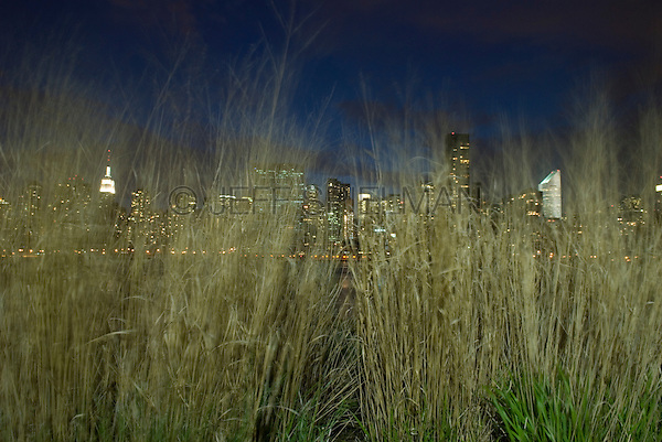 AVAILABLE FROM JEFF AS A FINE ART PRINT.<br /> <br /> AVAILABLE FOR COMMERCIAL AND EDITORIAL LICENSING FROM PLAINPICTURE.  Please go to www.plainpicture.com and search for image # p5690115.<br /> <br /> Midtown Manhattan Skyline at Night Viewed Thru Grass at the Edge of the East River Waterfront in Queens, New York City, New York State, USA