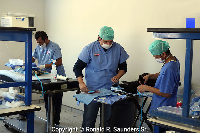 VETERINARIANS PARTICIPATE IN SPAY AND NEUTER CLINIC IN MEXICO