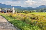 Farmland under the Green Mountains in Cambridge, VT, USA