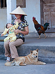 Scene from Ninh Binh, Vietnam