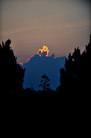 Huge tree silhouetted against clouds illuminated by the setting sun. Da Lat, Vietnam