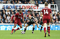 Liverpool's Daniel Sturridge under pressure from Newcastle United's Jonjo Shelvey<br /> <br /> Photographer Rich Linley/CameraSport<br /> <br /> The Premier League -  Newcastle United v Liverpool - Sunday 1st October 2017 - St James' Park - Newcastle<br /> <br /> World Copyright &copy; 2017 CameraSport. All rights reserved. 43 Linden Ave. Countesthorpe. Leicester. England. LE8 5PG - Tel: +44 (0) 116 277 4147 - admin@camerasport.com - www.camerasport.com