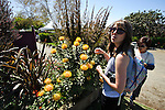 Exotic plant at the flower fields with young woman admring