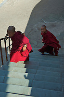 Novice Buddhist Tibetan Monks  at the Kopan Monastery Kathmandu
