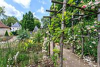 France, Indre-et-Loire (37), Azay-le-Rideau, parc et château d'Azay-le-Rideau au printemps, le jardin des secrets