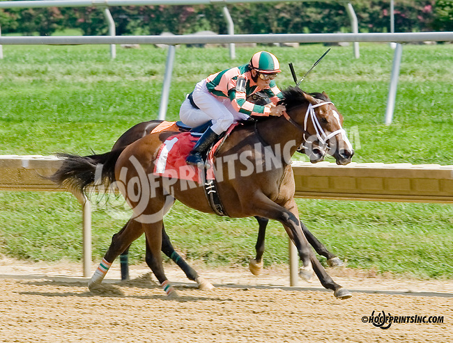 Lovely Maria winning at Delaware Park on 9/4/14