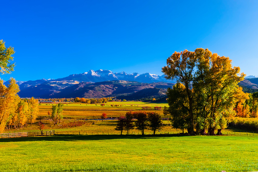 Fall color, ranch land, Ridgway, Colorado USA.