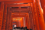 Asie, Japon, Kyoto, sanctuaire de Fushimi-Inari Taisha, torii orange//Asia, Japan, Kyoto, orange torii gates at Fushimi-Inari Taisha shrine
