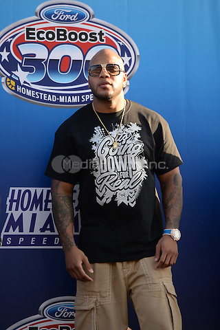 HOMESTEAD, FL - NOVEMBER 15: Flo Rida is sighted during the NASCAR Nationwide Series Ford EcoBoost 300 at Homestead-Miami Speedway on November 15, 2014 in Homestead, Florida Credit: mpi04/MediaPunch