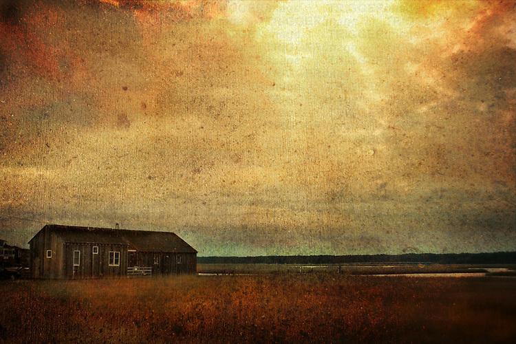 A shed near marshland