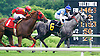 JC's Not Brown winning at Delaware Park on 6/4/16