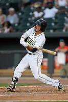 Designated hitter Jay Jabs (7) of the Columbia Fireflies bats in game one of a doubleheader against the Rome Braves on Saturday, August 19, 2017, at Spirit Communications Park in Columbia, South Carolina. Rome won, 8-2. (Tom Priddy/Four Seam Images)