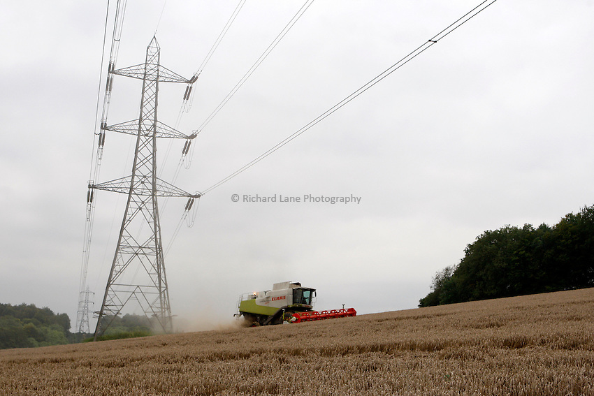 Photo: Richard Lane/Richard Lane Photography. Grain harvest near Little Missenden, Buckinghamshire. A Class combine harvester cutting winter wheat under a pylon and power lines. 16/09/2008.